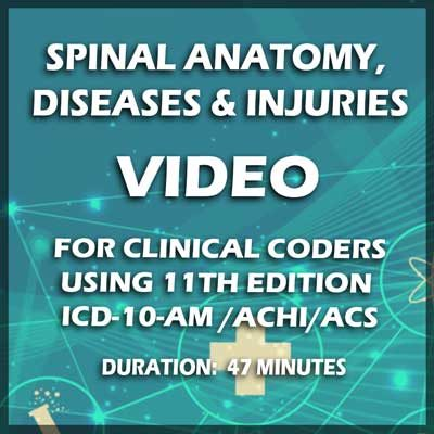 Spinal-Anatomy,Diseases-and-Injuries